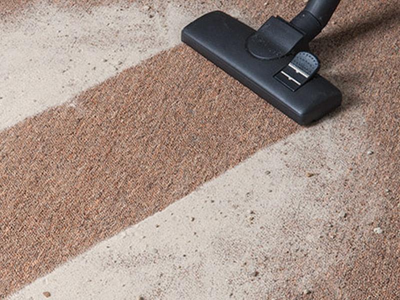Carpet Sanitizing