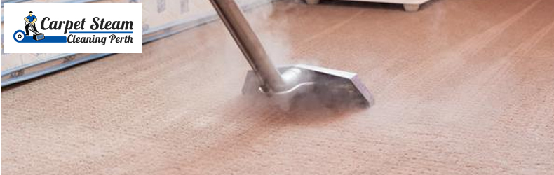Carpet Steam Cleaning Pearsall